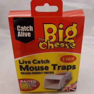 Live Catch Mouse